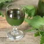 domowy sok z młodej pokrzywy